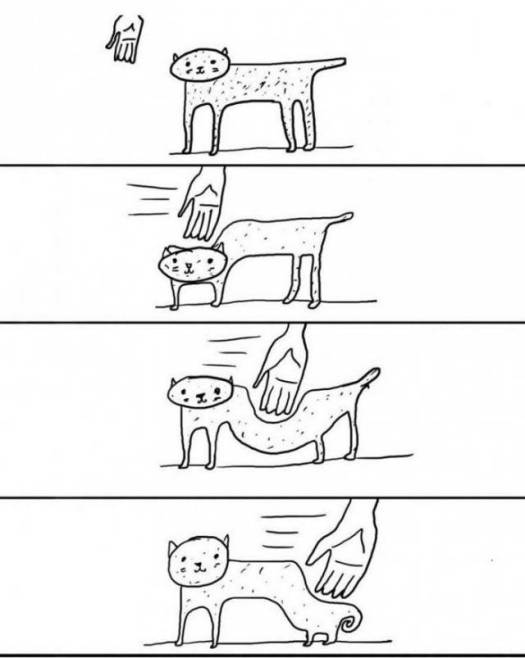 the_truth_about_petting_a_cat._6397560392.jpg
